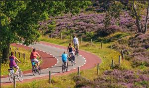 Pistes cyclables dans les Landes (40)